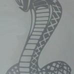 2 x Cobra Decal